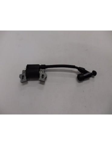 ACTIVE 1310 DMP